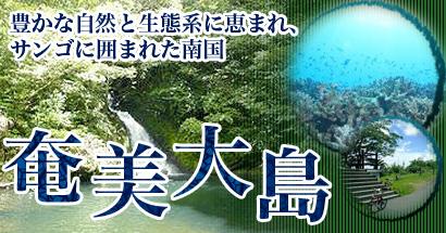 豊かな自然とサンゴが自慢!鹿児島県奄美大島