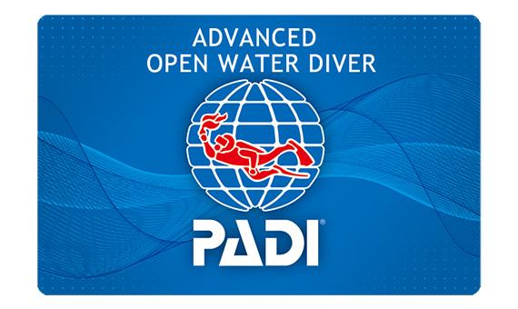 ダイビングライセンス Cカードの種類について