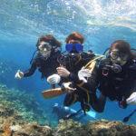 体験ダイビング写真