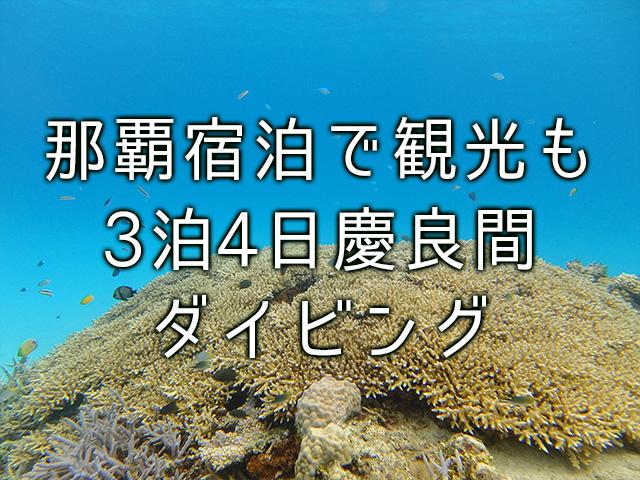 慶良間ダイビングモデルコース