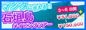 マンタに会える!石垣島ダイビングツアー