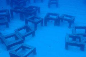 小野津漁礁
