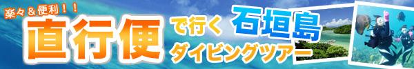 直行便で行く石垣島ダイビングツアー