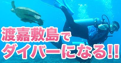 渡嘉敷島でダイビングライセンス取得ツアー