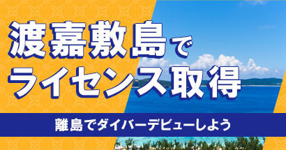 toka-license02.jpg