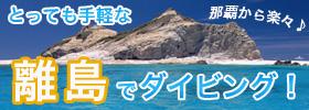 らくらくケラマ諸島ダイビング★